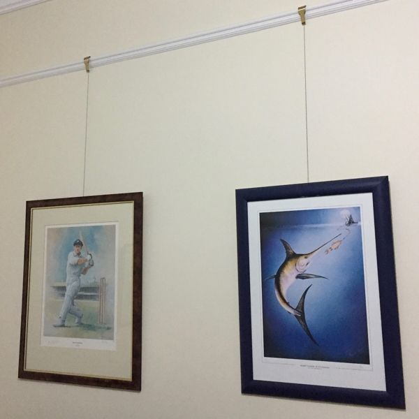 Picture Hanging Systems Free Delivery Shakespeare